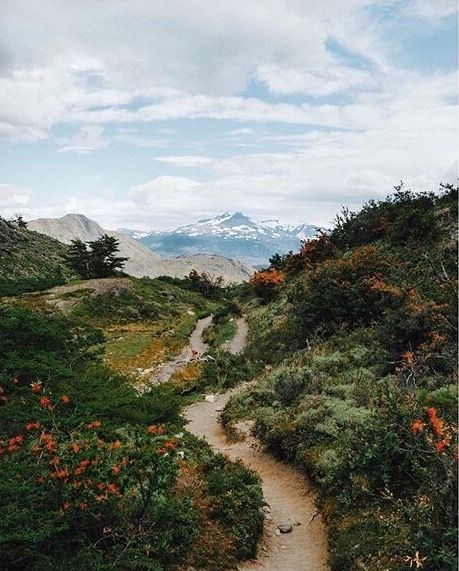 mountain trail.jpg